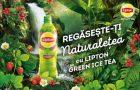 Nou sortiment de ice tea verde de la Lipton