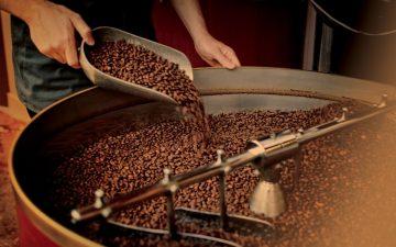 Starbucks foloseşte… o singură cafea. Ce nu ştiaţi?