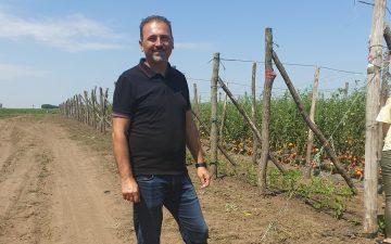 Lidl: fructe şi legume de la peste 130 de producători români